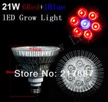popular hydroponic light bulb