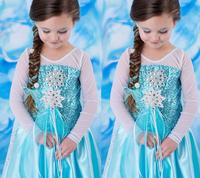 Retail+New 2014 child frozen queen elsa in princess dress children girl party dress,fashion summer Baby & kids vestido frozen