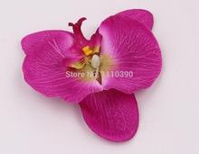wholesale diy orchid