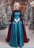 Frozen Elsa Dress Frozen Coronation Queen Elsa Dress Cosplay Costume Halloween Costumes Free Shipping