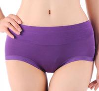Women Low Waist Bamboo Fiber Spandex Seamless Underwear Panties Briefs Lingerie Underpants Knickers Plus SIze L XL XXL XXXL