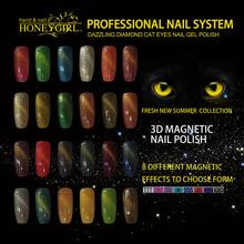 Factory hot selling Magnetic Nail Polish