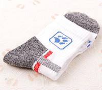 winter outdoor sport socks,coolmax sock, Bridgedale trekking short  moisture-wicking socks
