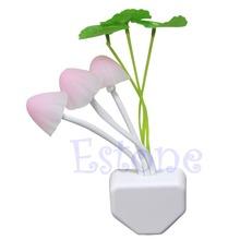 Colorful Romantic LED Mushroom Night Light DreamBed Lamp Home Illumination free shipping(China (Mainland))