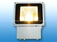 Freeshipping Led Flood Light 50W 70W IP65 AC85-265 LED Spotlight  Warm Cool White / RGB  Led Floodlight Outdoor Lightings