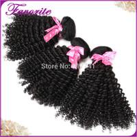 6A Brazilian Kinky Curly Virgin Hair Bundle,Ali Favorite Human Hair Weave,Brazilian Afro Kinky Curly Virgin Hair 3pcs