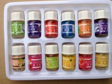 Free Shipping12pcs Natural Spa 100% pure Lavender Sandalwood essential oils Pack for Aromatherapy with 12 kinds of Fragrance