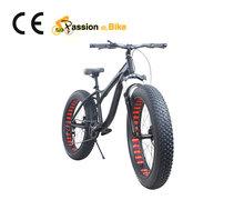 Global  bicicleta fat mountain bike Bicycle 26*4.9  Fat tire  Snow Beach mountain bicicletas fat bike rim with square hole(China (Mainland))