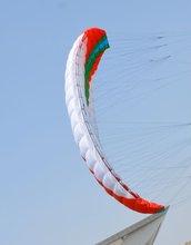 popular kite