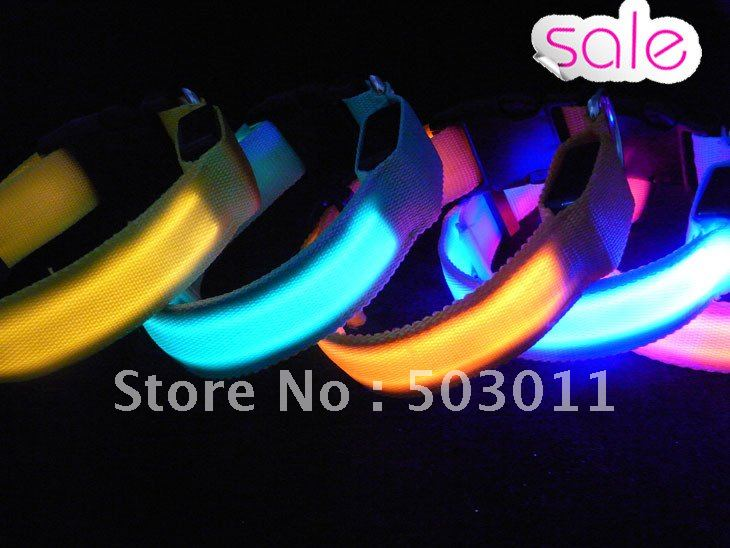 200 pcs, Wholesale ,Super bright waterproof LED dog collar,free shipping to all countries via DHL(Hong Kong)