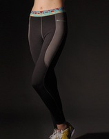 14035C-022 Winter Brushed Women Polyester/Spandex Spotswear Fitness Pants  +Wholesale/Retail