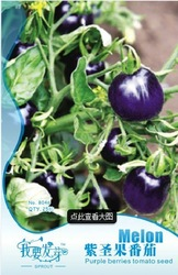 Free Shipping 3 Bags of  B046 purple Tomato seeds  * 25 mini vegetable seeds per Bag, 75 fruit seeds