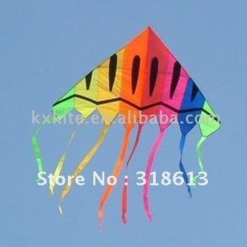 2.1m single line rainbow delta kite