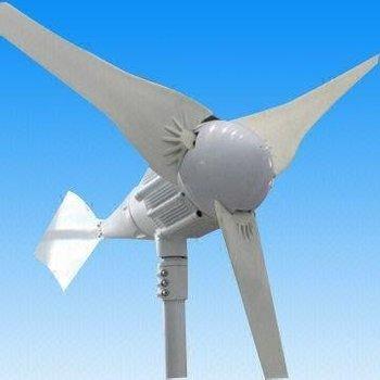 New!!Wind Turbine/ Wind Generator 1000W(CP-WG1000W-3)