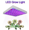 15W LED Grow Light with Super Harvest Colors   (NASA Red and Blue)