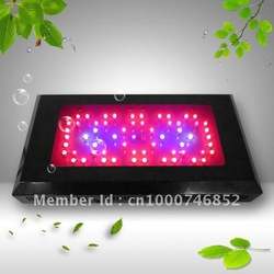 100%Black Star Ratio LED Grow light,plant light,pannel light best for plants,with 3 years warranty and dropship(China (Mainland))