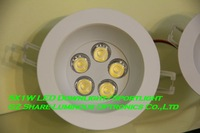 Professional! White Epistar High power 5W LED Downlight lamp Free Shipping