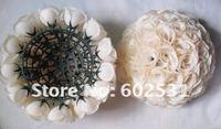 25cm plastic center beige wedding kissing ball,wedding holiday decoration,celebration flower decoration