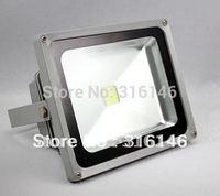 DC12V 24V 30w LED Flood light floodlight LED garden square plaza lamp waterproof DHL free shipping