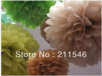 "Free Shiping 10 pcs 10"" Tissue Paper Pom Poms Party Wedding Shower Flower Balls Decoration"
