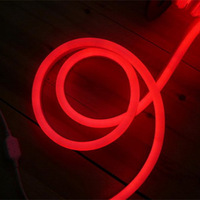 220v LED Neon Flex Light/2-wired(red)  LED Neon Flexible;Size:24*13mm;80LEDs/m ,red color with 50m Length per Roll