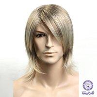 Christmas man hair wigs man cool cute hair wig sexy men handsome high quality social male artist wigs ZL8-16