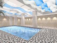 Art pvc stretch ceiling film