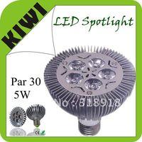 Free Shipping 5W Par30 Par 30 LED Lamp Bulb E27 Spot Light Cool/ Pure / Warm White LED bulbs