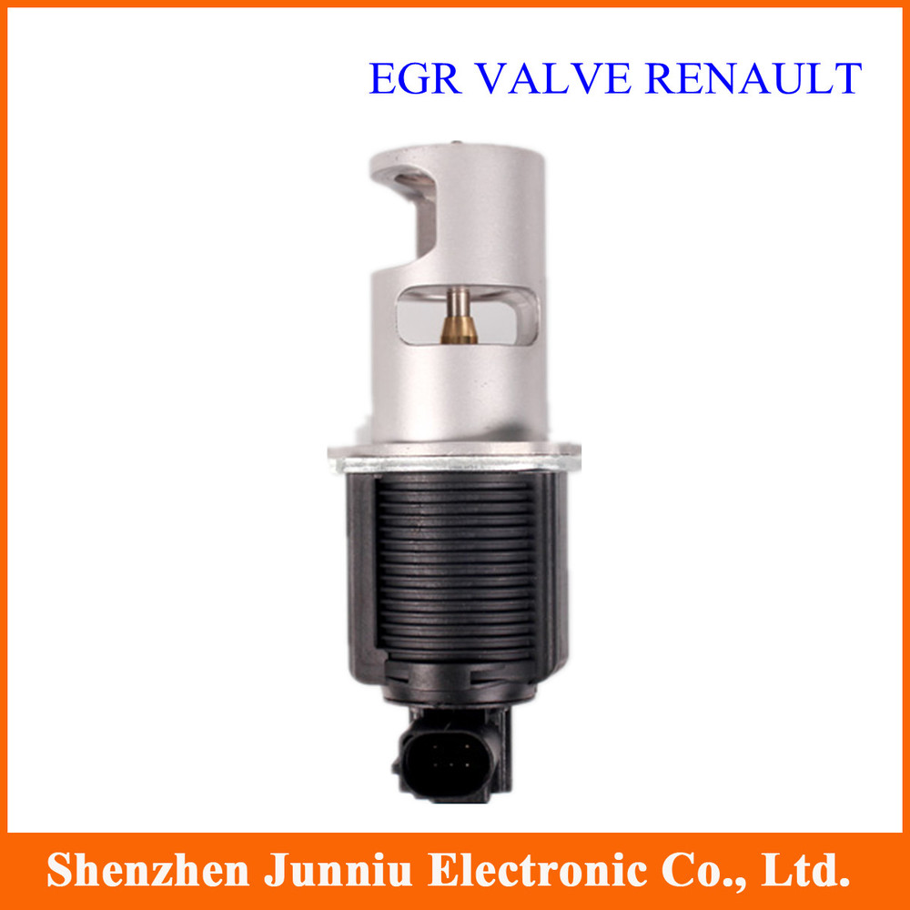 10 Pcs/lot EGR Valve RENAULT Free Shipping DHL Shipping(China (Mainland))