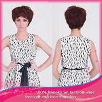Hot Sale! The Beauty  Fashion  Kanekalon Wigs Synthetic Straight  Wigs  fashion 1pc  Free Shipping