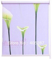 Clear Printing Color  Roller shade Free Shipping