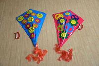 Mini beautify kite children kite +70m line bar