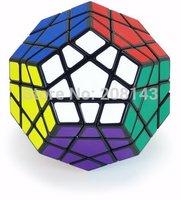 Free shipping! Shengshou Megaminx Magic Cube Puzzle Toy Black and White