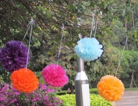 Hot selling! 20pcs/lot 10'' Paper Tissue Wedding Party Pompoms Decoration
