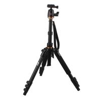 Beike BK-555 Tripod + BK-01 Ball Head for DSLR Camera Nikon Canon Sony Pentax Olympus