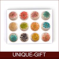 Rosalind  Nail art supplies full set nail art tool decoration dried flowers finger accessories petals