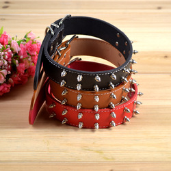 Free Shipping Pet Dog Collar Leather With Double Row Nail CD0149(China (Mainland))