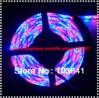 wholesale holiday ribbon strips High quality Waterproof 3528 SMD RGB Led Strip 300 LEDs/Roll  +24 keys IR Remote Free Shipping