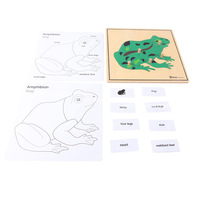 Montessori teaching aids animal puzzle Free Shipping  frog puzzle b050