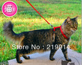 HOT!!! Free Shipping Cat Collar Cat Belt Lead Suit Color Black/Red(China (Mainland))