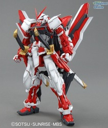 Free shipping bandai GUNDAM MG 129 Astray Red 1/100 model(China (Mainland))