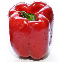 Big bell pepper seeds, planting, sweet crisp delicious, bonsai home garden