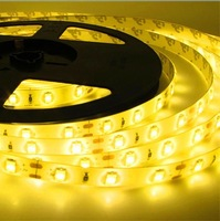 High Bright  Cool White /warm white 5630 SMD 5M 300 LED Strip Flexiable Tape Light Lighting Lamp waterproof IP65 12V