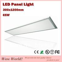 Super bright LED panel light 300*1200mm, 65W, 6500LM, 2700~7000k, AC85~265V/DC12V/DC24V input, CE ROHS PSE