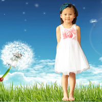 shij029 2013 summer vintage party dresses christmas items  flower girl dresses blue/red/white children clothing