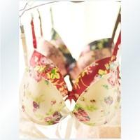 Free shipping women sexy seamless push up bra underwear set girls designer adjustable lingerie bra brief set HB201317