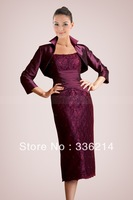 Perfect Combination  2013  Chiffon Lace Marvelous Sheath Mother Of The Bride Dresses