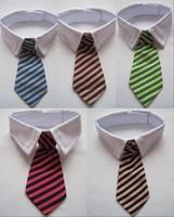 NEW Small Dog Multi-color Stripe Neck Tie Pet Bow Tie White Collar 5 colors