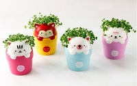 Free Shipping Cute Cartoon Animal Shaped Potted planters,bonsai Flowers mini planter pots with seeds for home decration