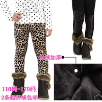 Girl's thickening warm  legging female childen leopard pants autumn and winter plus velvet thickening children's clothing 2013